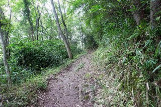 登山道3.jpg
